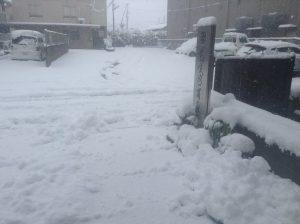 2016.01.14雪